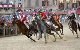 Палио в сиене: самые знаменитые скачки в италии